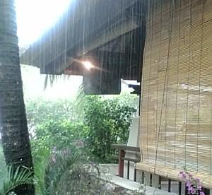 梅雨 アロマ 浄化